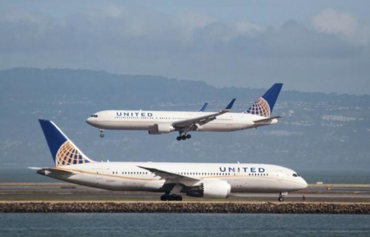 Houston Family's Dog Dies in United Airlines Plane Cargo
