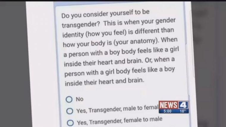 Gender survey