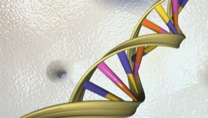 America May Fall Behind in Genetic Technologies, and That's OK - The
