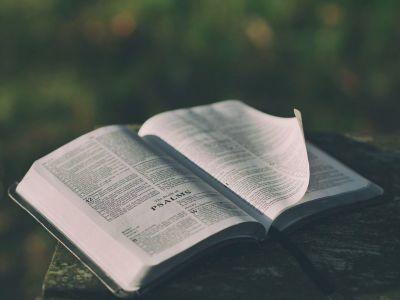 bible, psalms