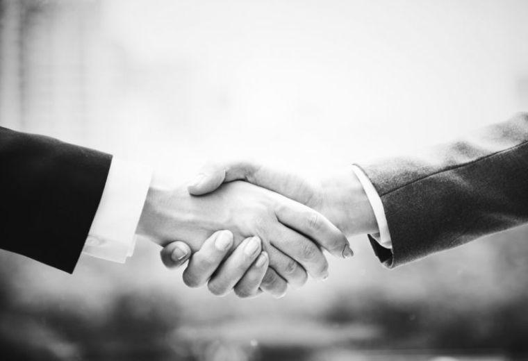 hands, handshake
