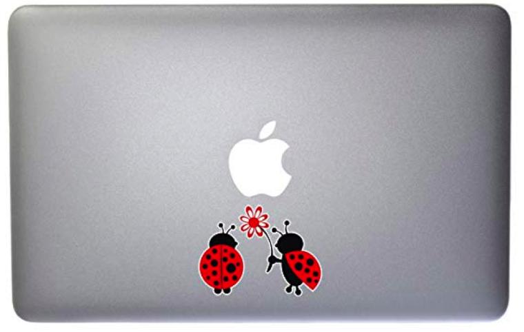 laptop33