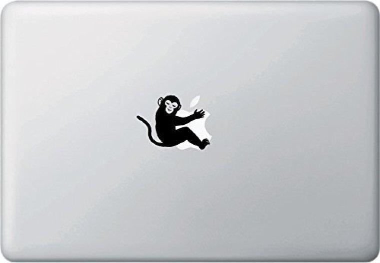 Monkey hugging apple