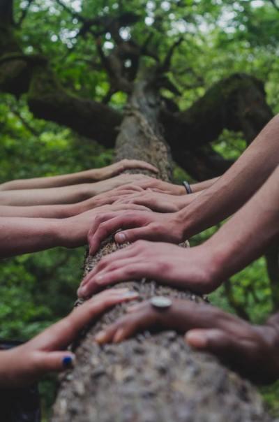 hands, friends, different races
