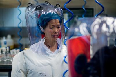 Chinese virologist Shi Zhengli, Wuhan lab