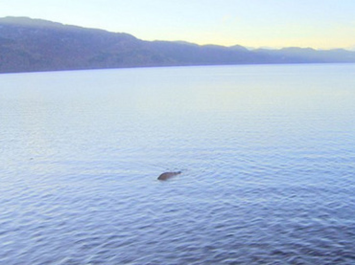 Loch Ness Monster Dead We Dont Know Where Shes Gone Says