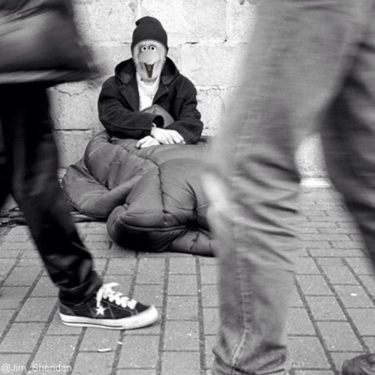 Big Bird Homeless
