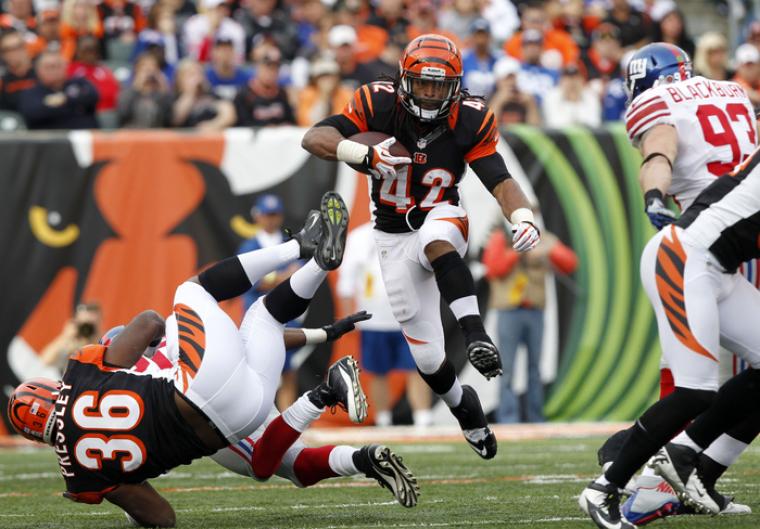 Cincinnati Bengals BenJarvus Green-Ellis NFL Football