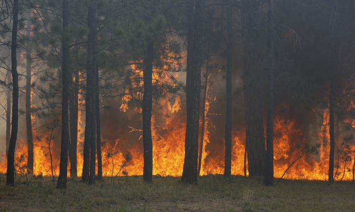 Colorado Wildfires 2013 Maps, Updates: Black Forest Fire Sparks