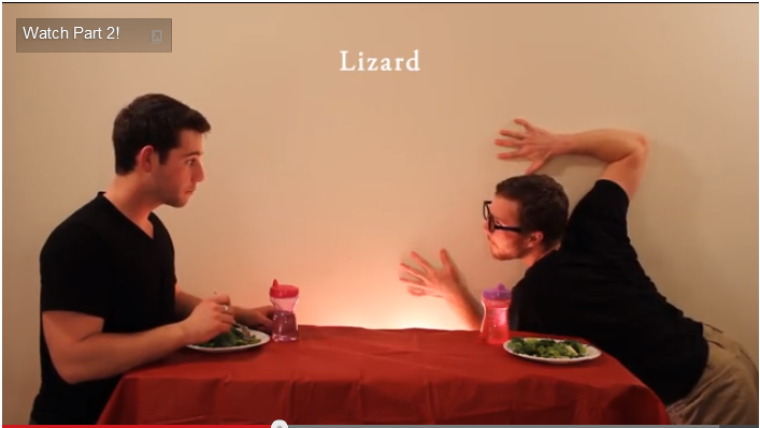 How Animals Eat Their Food - Lizard