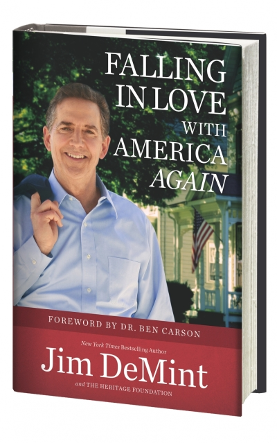 Falling In Love With America Again Book Cover