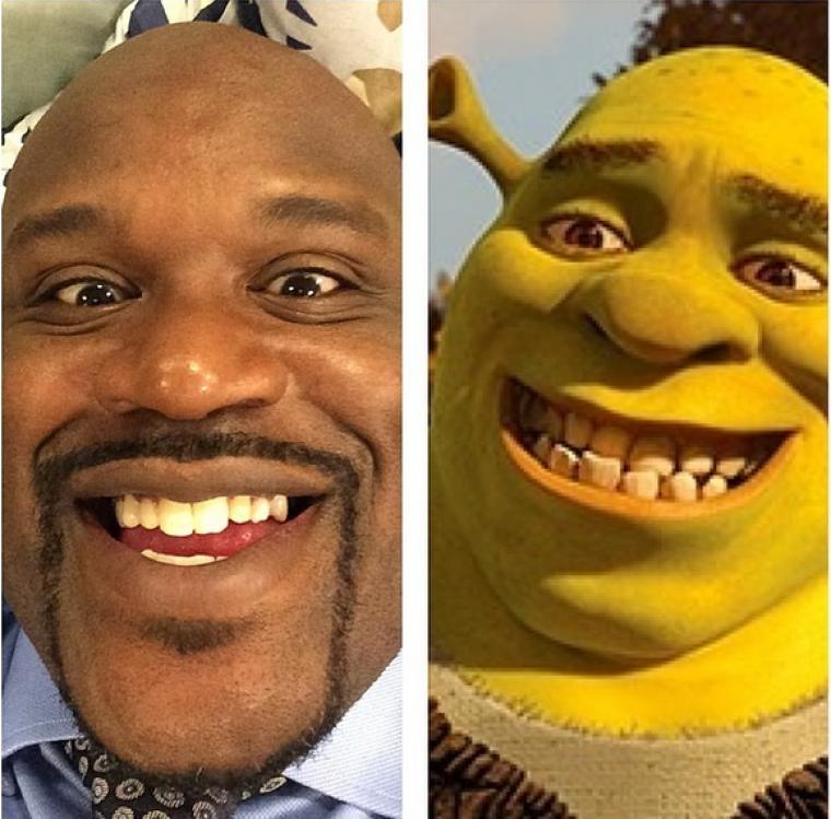 Shaq, Shrek