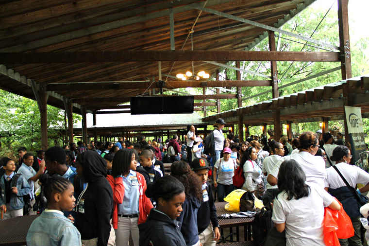 Victoria Osteen Bronx Zoo