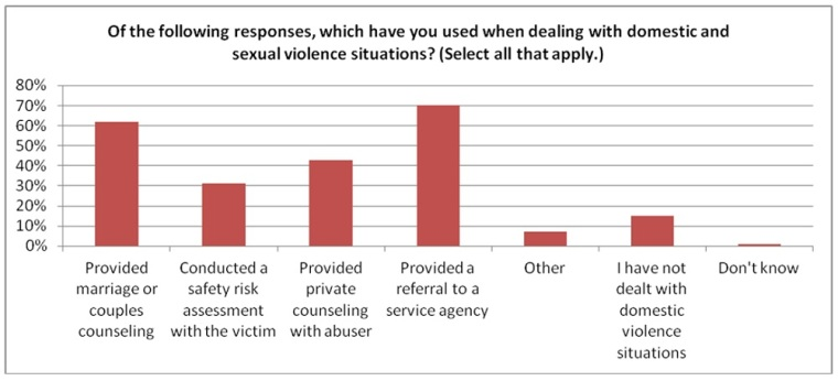 Protestant Pastors Survey on Sexual and Domestic Violence