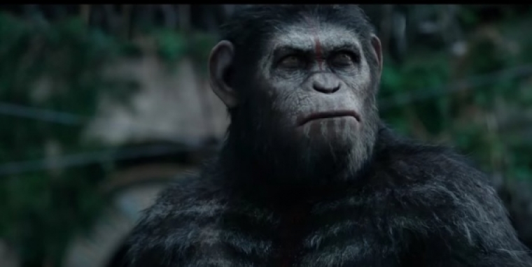 War of the Planet of Apes