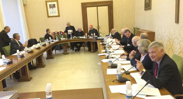 vatican synod and thomas schirrmacher