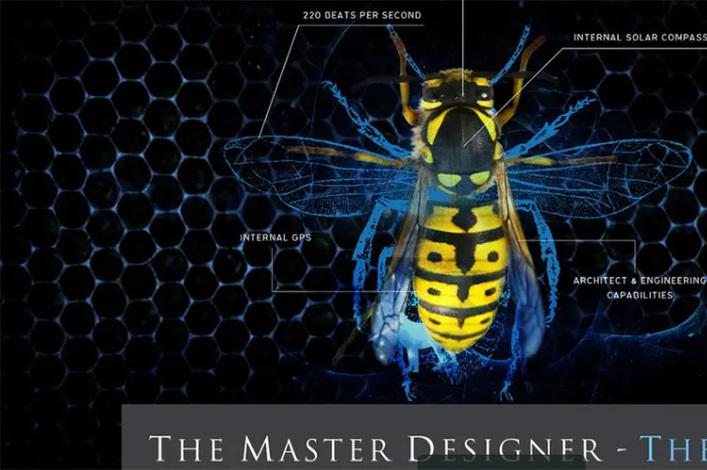 God, the Master Designer of life