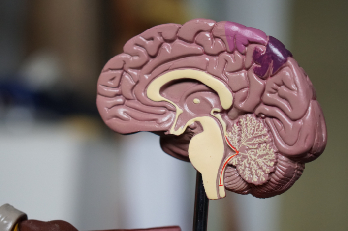 George Gilder: 'One human brain is as complex as the entire global internet'