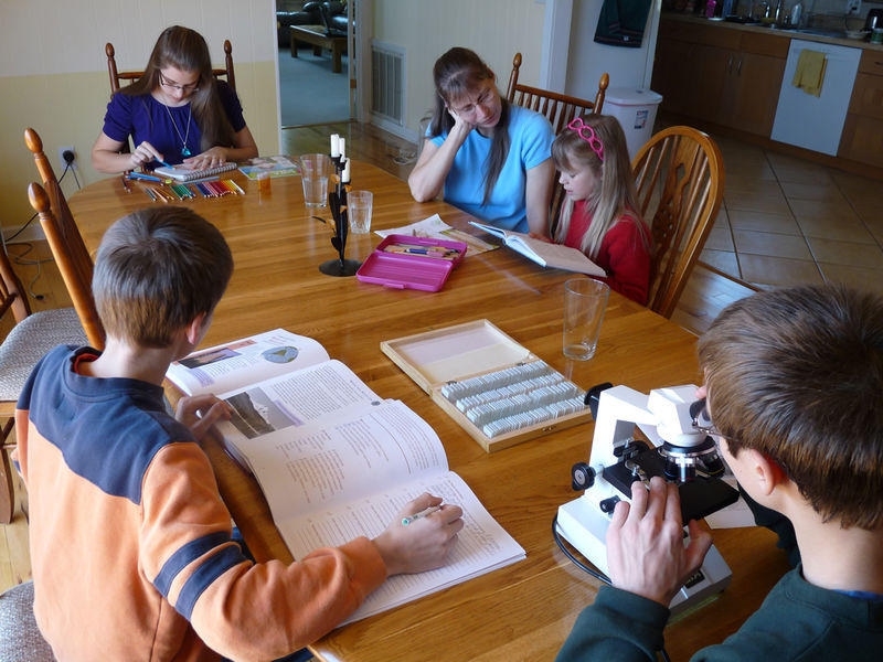 CDC Says Early School Day Is Bad for Kids. Is Homeschool the Answer? - The  Christian Post